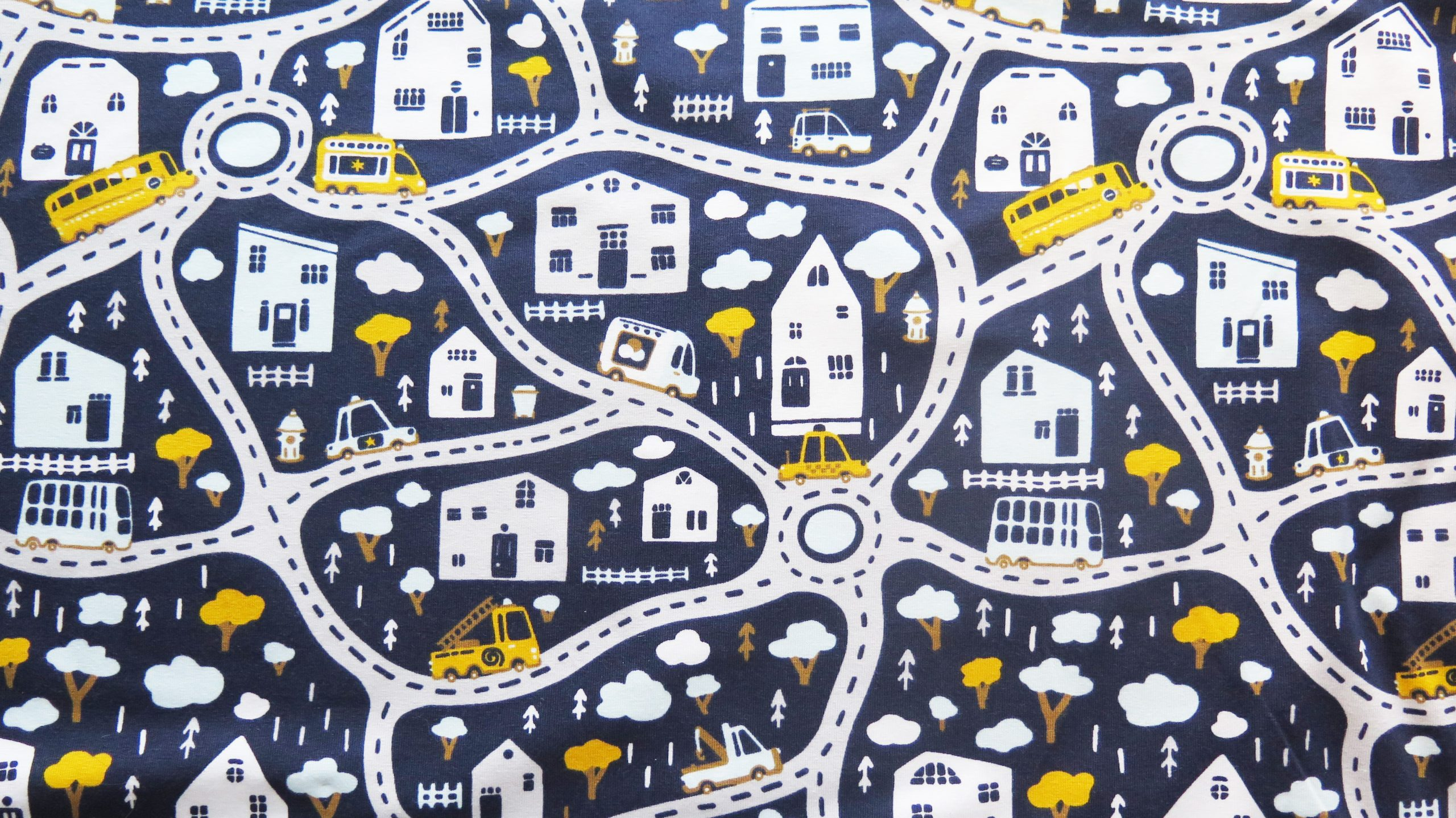 road map cotton jersey